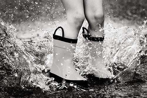 puddle-jumper